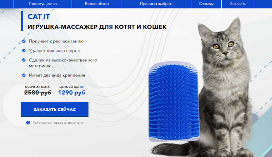 Cat It за 1290р. — Обман!