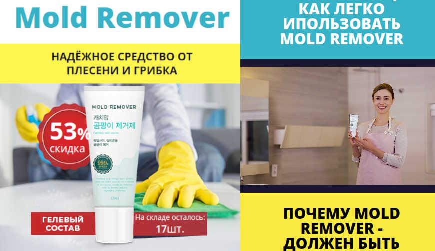 Mold Remover за 1499р. — Обман!